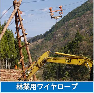 林業用ワイヤロープ